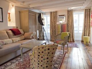 Luxury Artist Apt in Montorgueil. Photos-Paintings - Paris vacation rentals