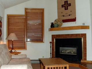Very Nice, Ski in Ski Out Studio at the full service Iron Horse Resort - Winter Park vacation rentals