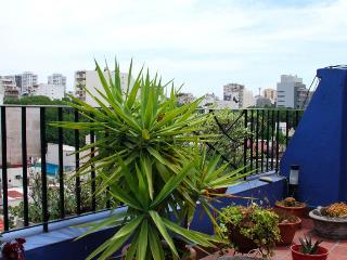 3 bedroom terrace apartment overlooking BA - Buenos Aires vacation rentals