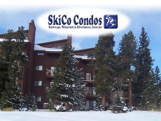 Affordable 3 Bdrm. Condo Wildernest- Silverthorne - Summit County Colorado vacation rentals