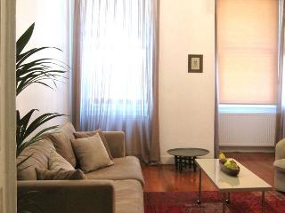 A charming Galata apartment with 3 bedrooms - Istanbul vacation rentals