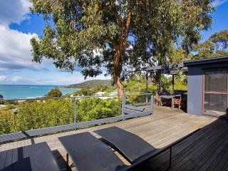 6 Lorne Terrace, Lorne - Deans Marsh vacation rentals