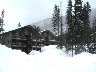 Wheeler Peak 301 - Taos vacation rentals