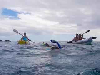 Swim-Snorkel-Kayak steps away & FREE equipment - Saint John vacation rentals