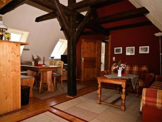LLAG Luxury Vacation Apartment in Meissen - 915 sqft, well-kept, in an optimal location, central next… - Rabenau vacation rentals
