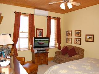 Independence square Unit 309 - Aspen vacation rentals