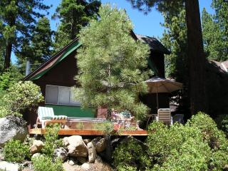 Frog Cabin $175/nt $1050/wk includes 1 FREE night stay 1500 sq ft Hot Tub - Lake Tahoe vacation rentals