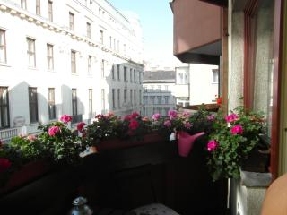 Budapest, Aranykéz 6th Street, in the heart of the city!Free Wifi! - Budapest vacation rentals