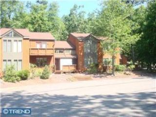 3BR, A/C, Wifi, Big Boulder Lake Club passes - Lake Harmony vacation rentals