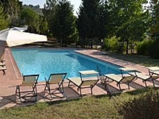 Casa Camomilla D - Pontassieve vacation rentals