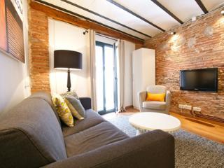 Borne Basilica Deluxe Loft D - Catalonia vacation rentals