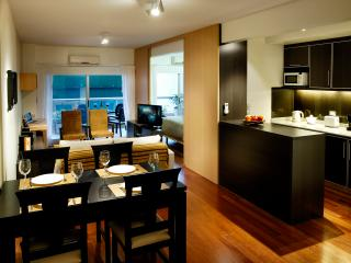 LAST MIN OFFER. 1 BR - BIG BALCONY Apart Recoleta - Buenos Aires vacation rentals