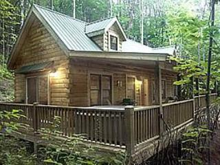 Ravens Cove Cabin - Seclusion, privacy and comfort - Bryson City vacation rentals