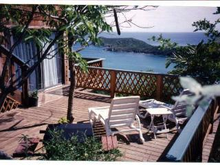 Newly Renovated! Gorgeous Views from Caribbean