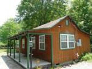 Cozy Cabin on the Creek - Image 1 - Bryson City - rentals