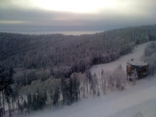 Soaring Eagle Ski in Ski out - Snowshoe vacation rentals