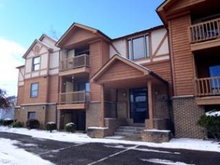 Ski Harbor #40 - McHenry vacation rentals