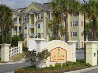 Beautifully Furnished Luxury Condo at Cane Island Resort and conveniently located near Disney - Kissimmee vacation rentals