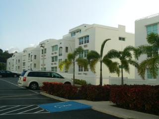 Modern penthouse with sky terrace and a/c in all the bedrooms!! Look!!! - Fajardo vacation rentals