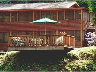 The Cheat River Lodge - Newly Updated Suites - Elkins vacation rentals