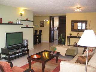 Renovated Condo in the heart of Condado LagoonView - Puerto Rico vacation rentals