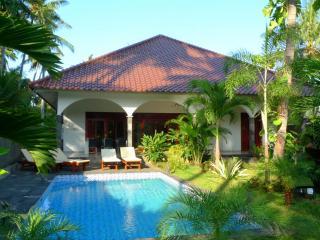 Villa Kelapa Lovina Bali - Lovina vacation rentals