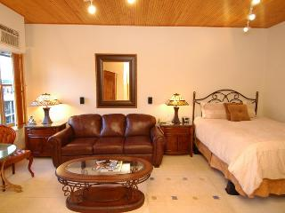 Independence Square Unit 306 - Aspen vacation rentals