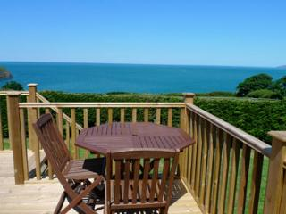 Pet Friendly Holiday Property - Y Bwthyn, Cwm Yr Eglwys - Pembrokeshire vacation rentals