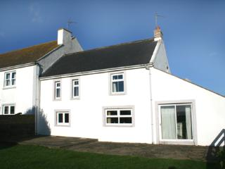 Pet Friendly Holiday Cottage - Carn Nwchwn Cottage, St Davids - Saint Davids vacation rentals