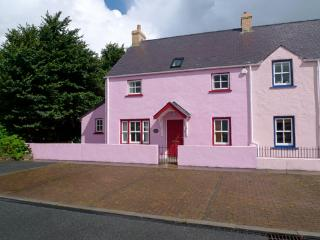 Pet Friendly Holiday Home - Y Nyth Bach, Newport - Boncath vacation rentals