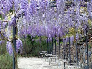 Cava di Calbello - Siena vacation rentals