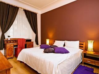 Beautiful Bohdana 3-be Apartment in Kiev Center - Kiev vacation rentals