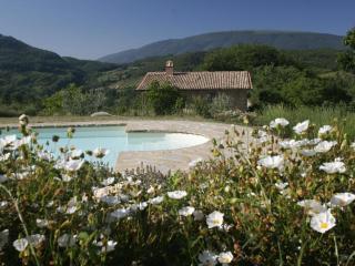 Rentals with pool, holiday apartments at Assisi - Assisi vacation rentals