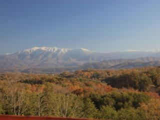Beautiful Mountain Views 4BR5BA 1/2 priceZipline - Pigeon Forge vacation rentals