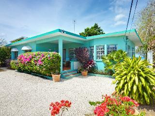 Sea Turtle at Brighton Beach, Barbados - Oceanfront, Pool - Terres Basses vacation rentals