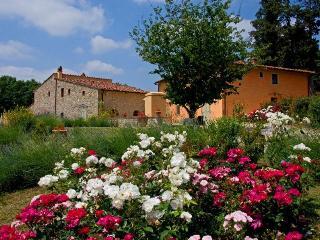 BORGO CASCIANO 1 - FRANTOIO - San Casciano vacation rentals