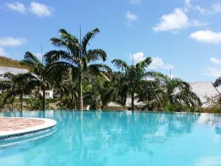 Nonsuch Bay Resort Luxury Condo Beach Side SeaView - Antigua vacation rentals