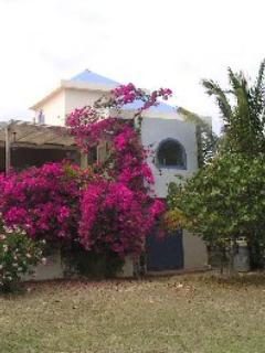 - Indigo Reef - Allamanda - Anguilla - rentals
