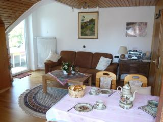 Vacation Apartment in Langenargen - quiet, comfortable, WiFi, Sat TV (# 2319) - Tettnang vacation rentals