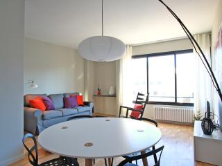 Vila Olimpica Beach apartment - Barcelona Province vacation rentals