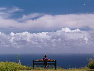 Serene, Expansive Ocean Views, Lovely Hawaii Home - Honokaa vacation rentals
