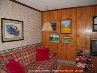 The Summit, 3 bedroom condo (A) Snowshoe Mtn in WV - Snowshoe vacation rentals