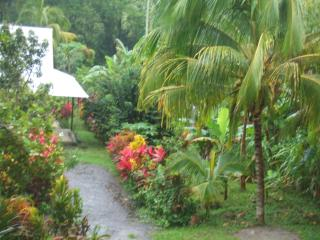 Hide-Out Cottage on Nature Island Dominica - Morne Trois Pitons National Park vacation rentals