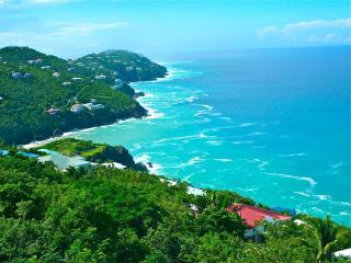 180 Degree Tropical Ocean View 2 Bedroom Condo! - Saint Thomas vacation rentals