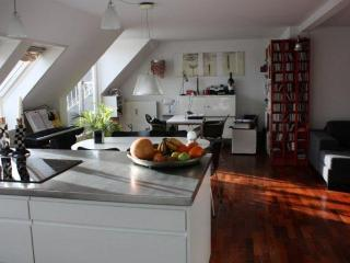 Luxury apartment close to Hellerup station - Snekkersten vacation rentals