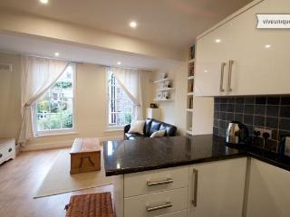 Cute London Apartment in Angel, Islington - Buckhurst Hill vacation rentals