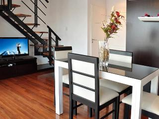 Duplex 1 Bedroom - Private Terrace 1.5 Bath (PH1) - Buenos Aires vacation rentals