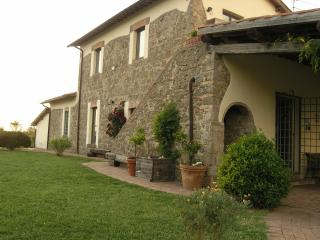 old countryhouse with pool immerse in olivetrees - Viterbo vacation rentals