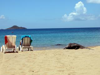 2 BR Beachfront/ Balcony/ Pool/ Steps from Beach! - Virgin Gorda vacation rentals