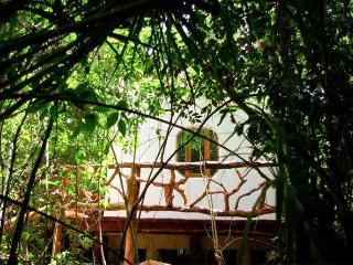Cenotes as your neighbors, away from it all. - Puerto Morelos vacation rentals